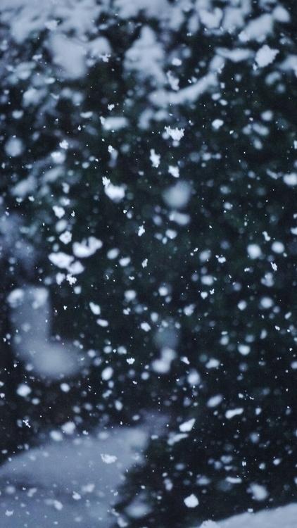 snow-on-the-sidewalk.tumblr.com