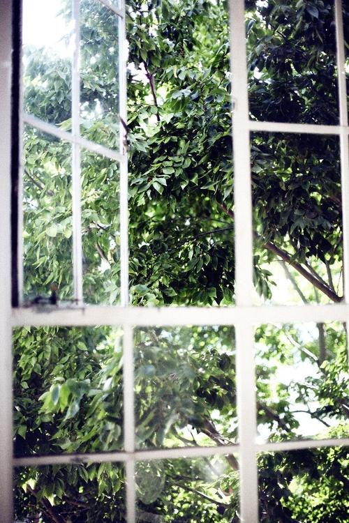 clicktoenlarge.tumblr.com