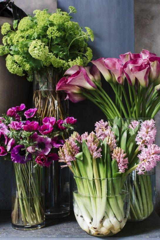 gardenista.com
