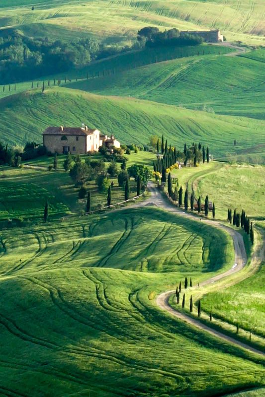 intothegreatunknown.tumblr.com:post:78141065097:gladiator-fields-tuscany-italy