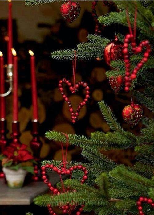 pinterest.com:gardenpicture:christmas: